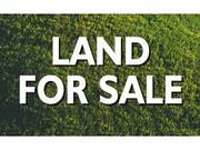 Real Estate Project Land for Sale