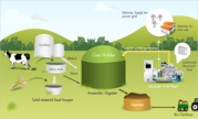 Biogas Power Plant Supplier