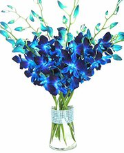 Online Flowers Delivery In Hyderabad,  Birthday Gifts To India,  Send Bi