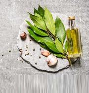 Co2 Extract Bay Leaf Oil - Bay Leaf Oils,  Manufacturer,  Exporter & Sup